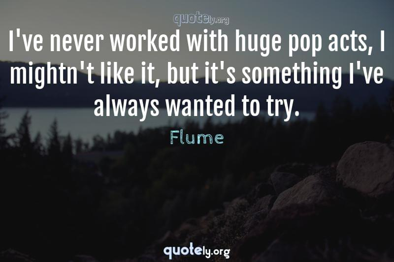 I've never worked with huge pop acts, I mightn't like it, but it's something I've always wanted to try. by Flume