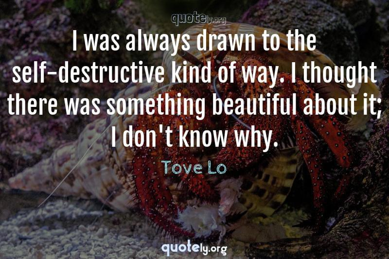 I was always drawn to the self-destructive kind of way. I thought there was something beautiful about it; I don't know why. by Tove Lo