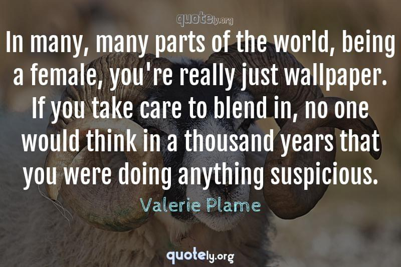 In many, many parts of the world, being a female, you're really just wallpaper. If you take care to blend in, no one would think in a thousand years that you were doing anything suspicious. by Valerie Plame