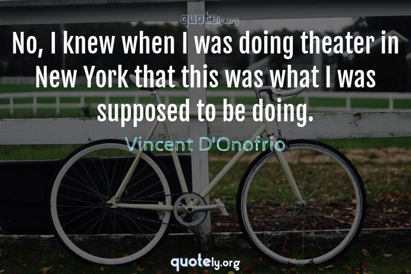 No, I knew when I was doing theater in New York that this was what I was supposed to be doing. by Vincent D'Onofrio
