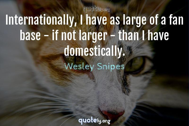 Internationally, I have as large of a fan base - if not larger - than I have domestically. by Wesley Snipes