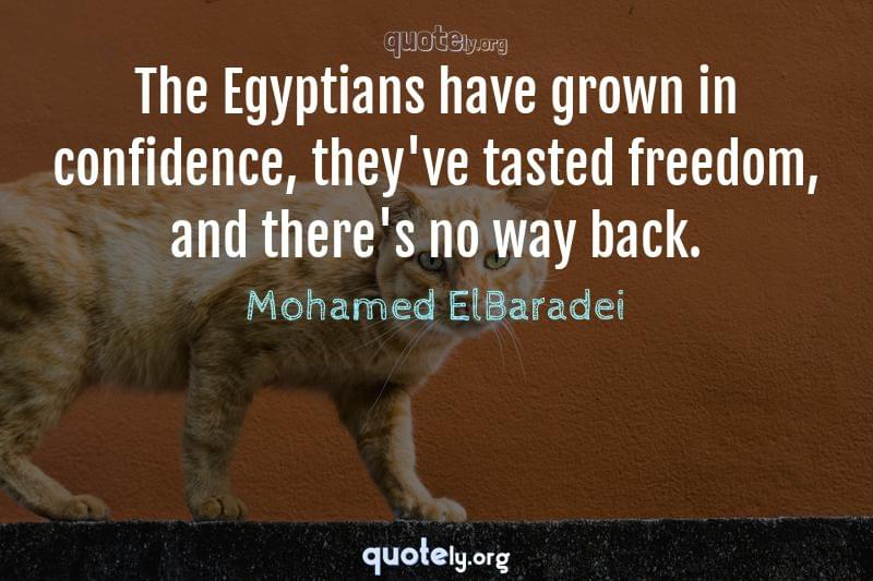 The Egyptians have grown in confidence, they've tasted freedom, and there's no way back. by Mohamed ElBaradei
