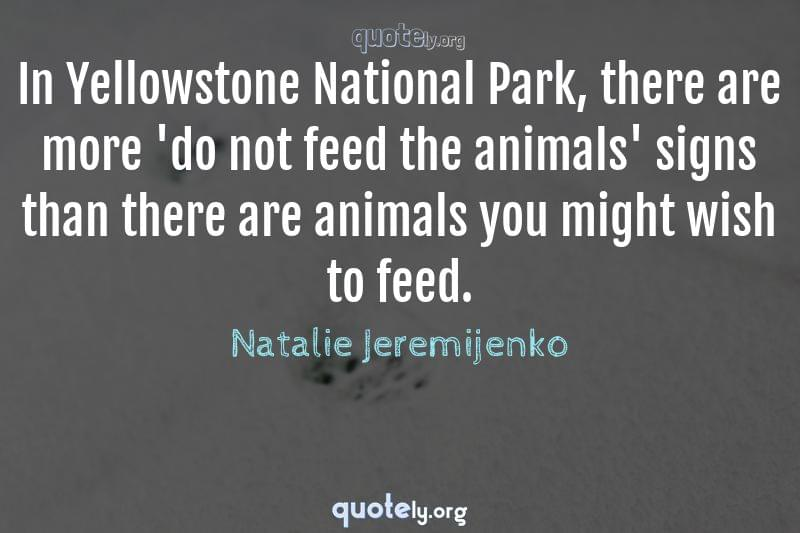 In Yellowstone National Park, there are more 'do not feed the animals' signs than there are animals you might wish to feed. by Natalie Jeremijenko