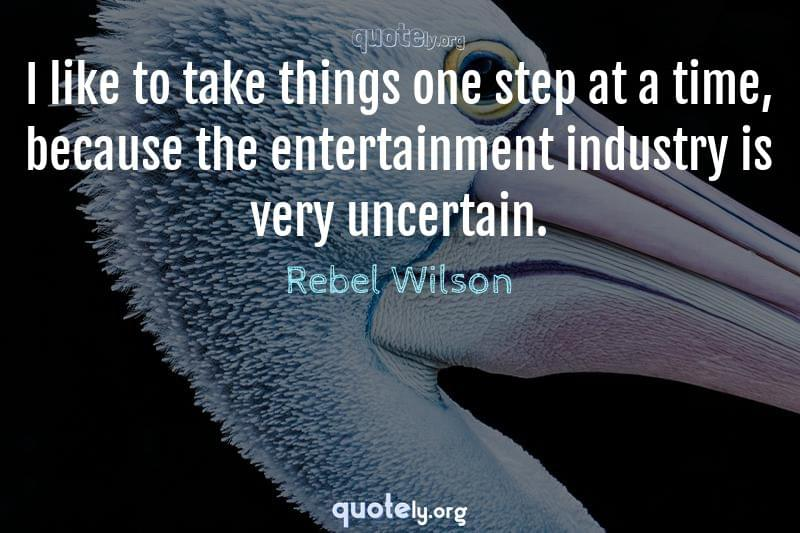 I like to take things one step at a time, because the entertainment industry is very uncertain. by Rebel Wilson