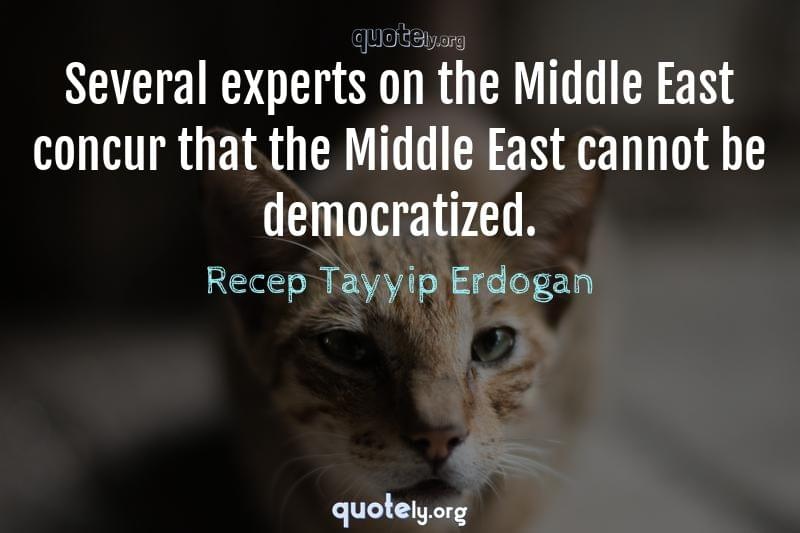 Several experts on the Middle East concur that the Middle East cannot be democratized. by Recep Tayyip Erdogan
