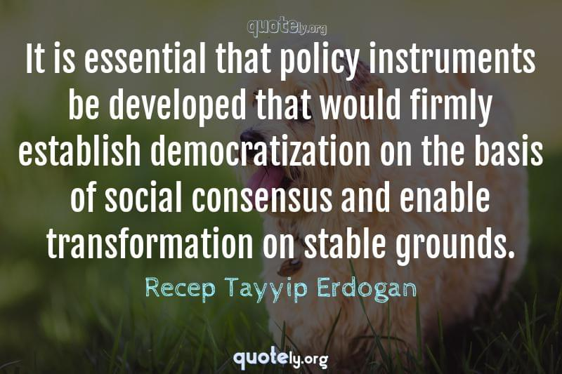 It is essential that policy instruments be developed that would firmly establish democratization on the basis of social consensus and enable transformation on stable grounds. by Recep Tayyip Erdogan