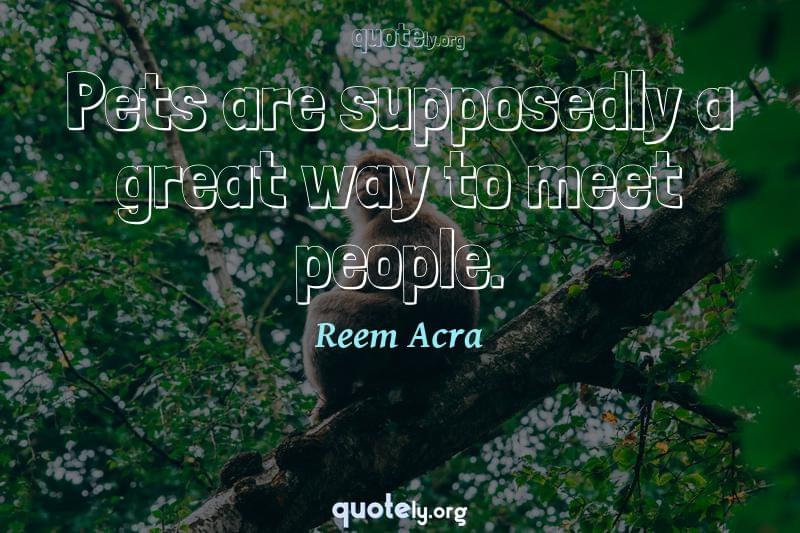Pets are supposedly a great way to meet people. by Reem Acra