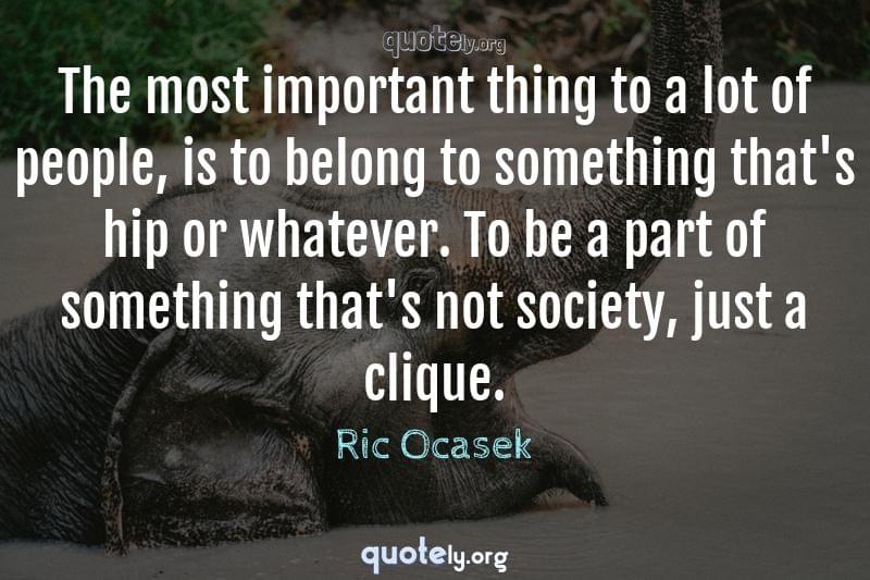 The most important thing to a lot of people, is to belong to something that's hip or whatever. To be a part of something that's not society, just a clique. by Ric Ocasek