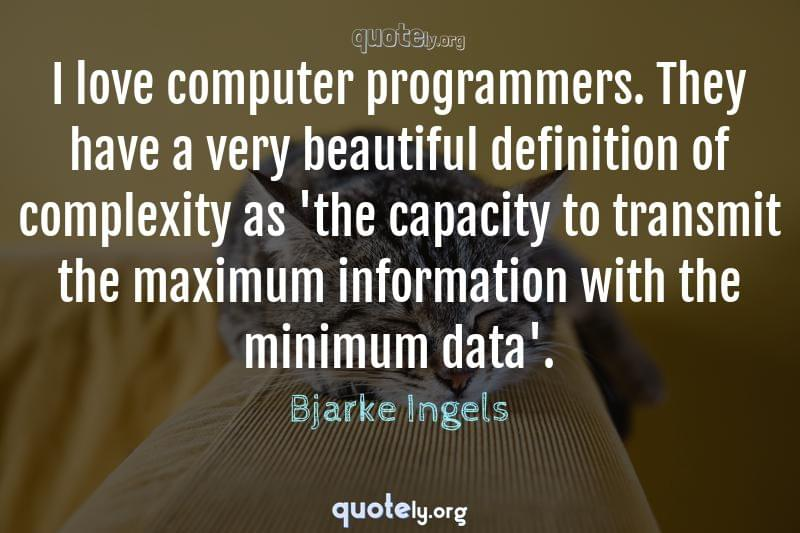 I love computer programmers. They have a very beautiful definition of complexity as 'the capacity to transmit the maximum information with the minimum data'. by Bjarke Ingels