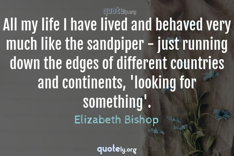 All my life I have lived and behaved very much like the sandpiper - just running down the edges of different countries and continents, 'looking for something'. by Elizabeth Bishop