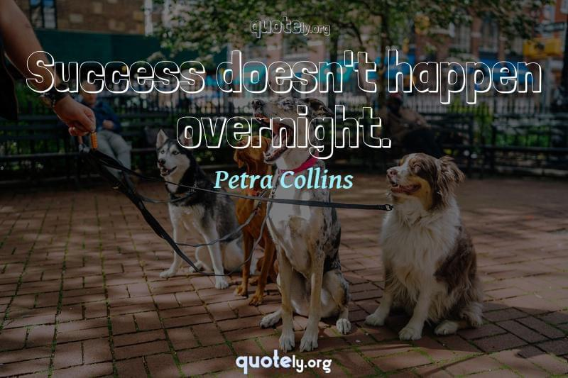 Success doesn't happen overnight. by Petra Collins