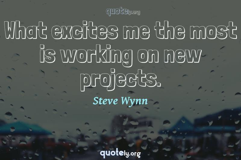 What excites me the most is working on new projects. by Steve Wynn