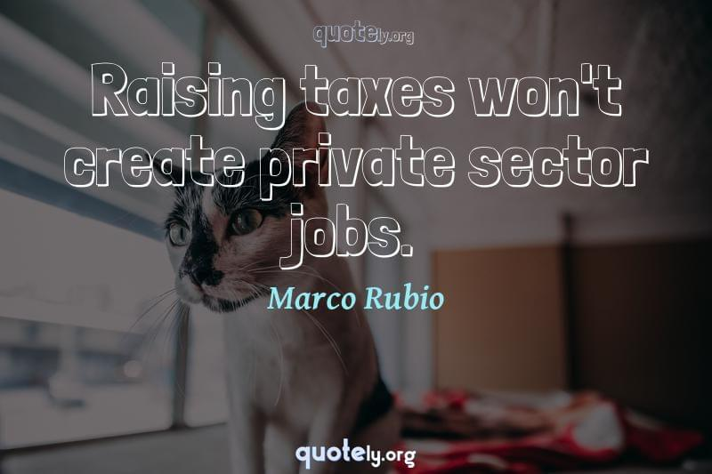 Raising taxes won't create private sector jobs. by Marco Rubio