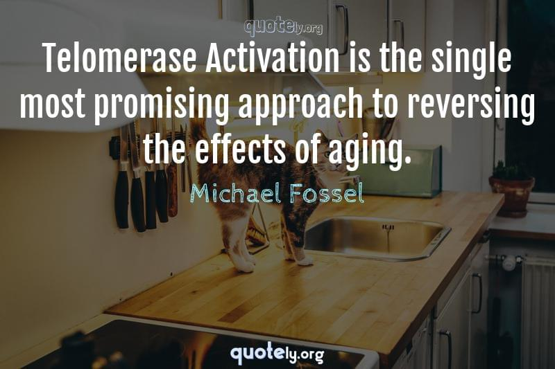 Telomerase Activation is the single most promising approach to reversing the effects of aging. by Michael Fossel