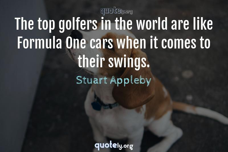 The top golfers in the world are like Formula One cars when it comes to their swings. by Stuart Appleby