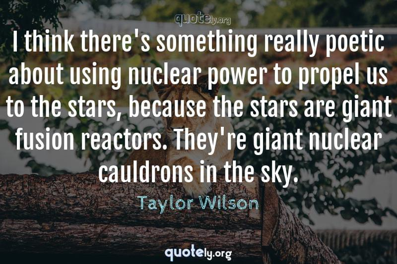 I think there's something really poetic about using nuclear power to propel us to the stars, because the stars are giant fusion reactors. They're giant nuclear cauldrons in the sky. by Taylor Wilson