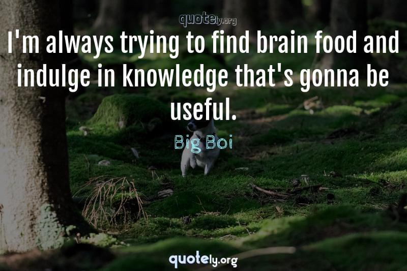 I'm always trying to find brain food and indulge in knowledge that's gonna be useful. by Big Boi