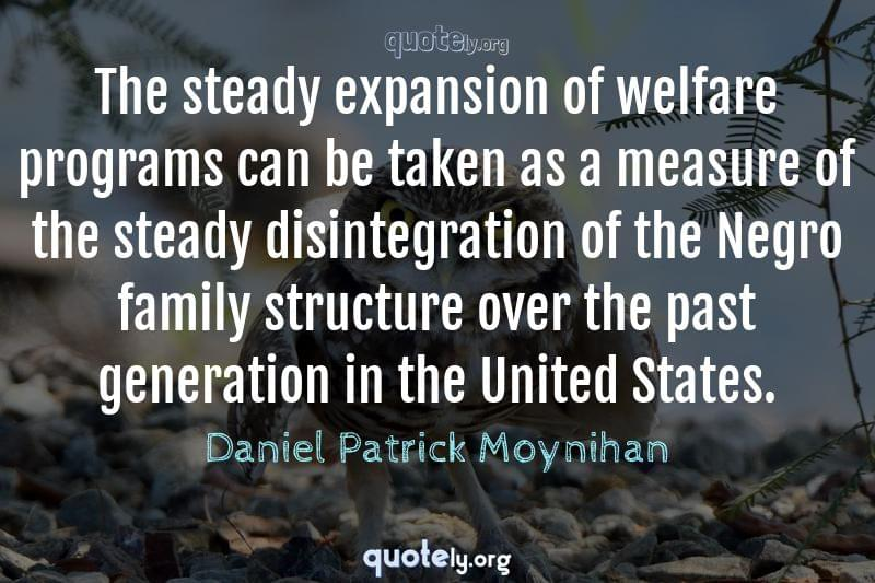 The steady expansion of welfare programs can be taken as a measure of the steady disintegration of the Negro family structure over the past generation in the United States. by Daniel Patrick Moynihan