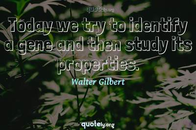 Photo Quote of Today we try to identify a gene and then study its properties.