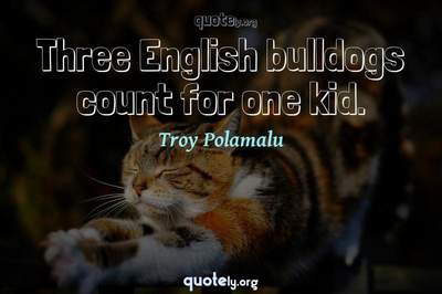 Photo Quote of Three English bulldogs count for one kid.