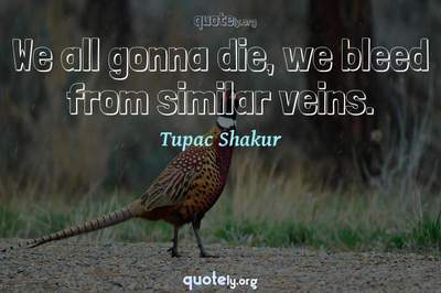 Photo Quote of We all gonna die, we bleed from similar veins.
