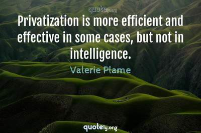 Photo Quote of Privatization is more efficient and effective in some cases, but not in intelligence.