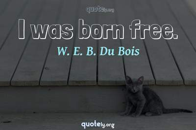 Photo Quote of I was born free.