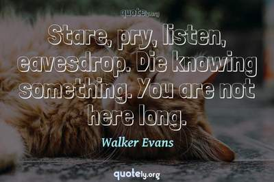 Photo Quote of Stare, pry, listen, eavesdrop. Die knowing something. You are not here long.