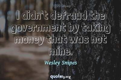 Photo Quote of I didn't defraud the government by taking money that was not mine.