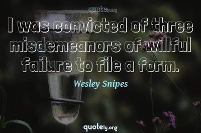 Photo Quote of I was convicted of three misdemeanors of willful failure to file a form.