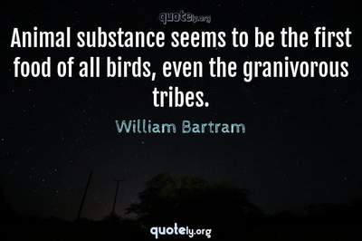 Photo Quote of Animal substance seems to be the first food of all birds, even the granivorous tribes.