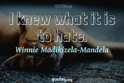 Photo Quote of I knew what it is to hate.