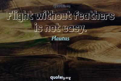 Photo Quote of Flight without feathers is not easy.