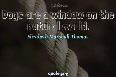 Photo Quote of Dogs are a window on the natural world.