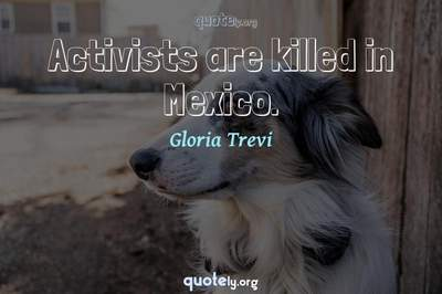 Photo Quote of Activists are killed in Mexico.