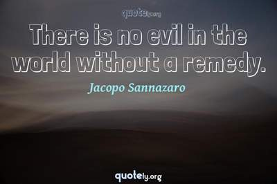 Photo Quote of There is no evil in the world without a remedy.