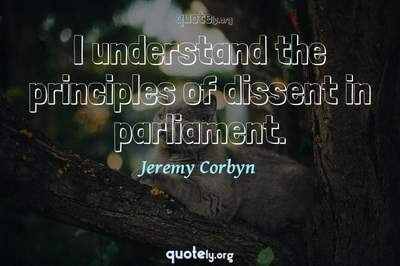 Photo Quote of I understand the principles of dissent in parliament.