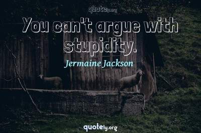 Photo Quote of You can't argue with stupidity.