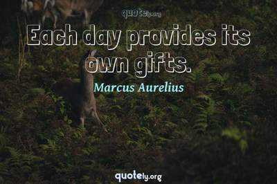 Photo Quote of Each day provides its own gifts.