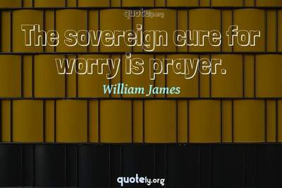 Photo Quote of The sovereign cure for worry is prayer.