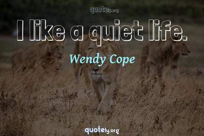 Photo Quote of I like a quiet life.