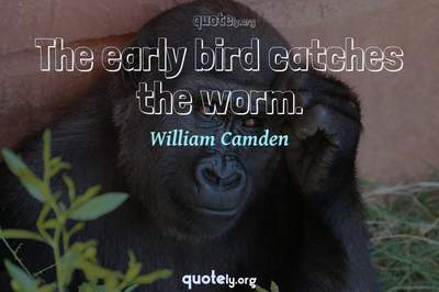 Photo Quote of The early bird catches the worm.