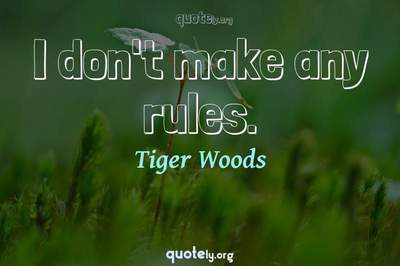 Photo Quote of I don't make any rules.