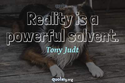 Photo Quote of Reality is a powerful solvent.