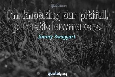 Photo Quote of I'm knocking our pitiful, pathetic lawmakers.