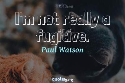 Photo Quote of I'm not really a fugitive.