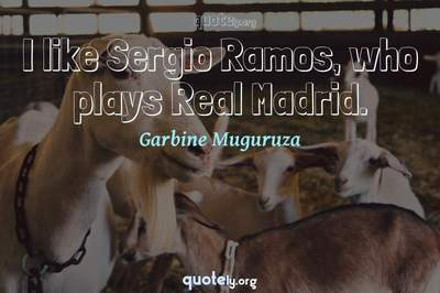 Photo Quote of I like Sergio Ramos, who plays Real Madrid.