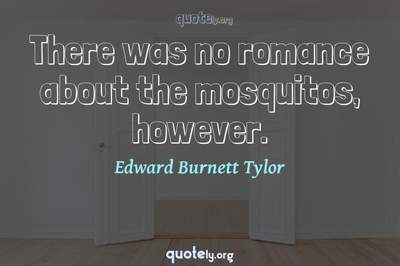 Photo Quote of There was no romance about the mosquitos, however.