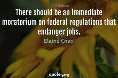 Photo Quote of There should be an immediate moratorium on federal regulations that endanger jobs.