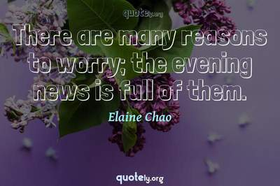 Photo Quote of There are many reasons to worry; the evening news is full of them.